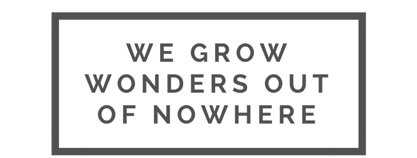 We Grow Wonders grey 515151.png
