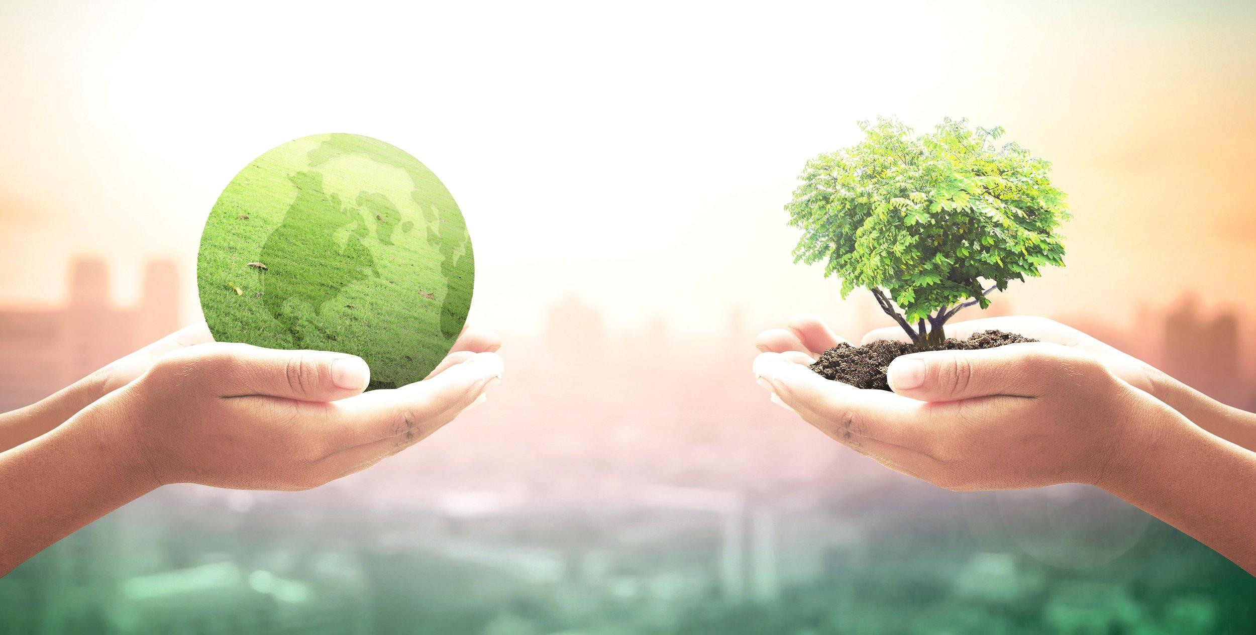 931534448-Sustainability.jpg