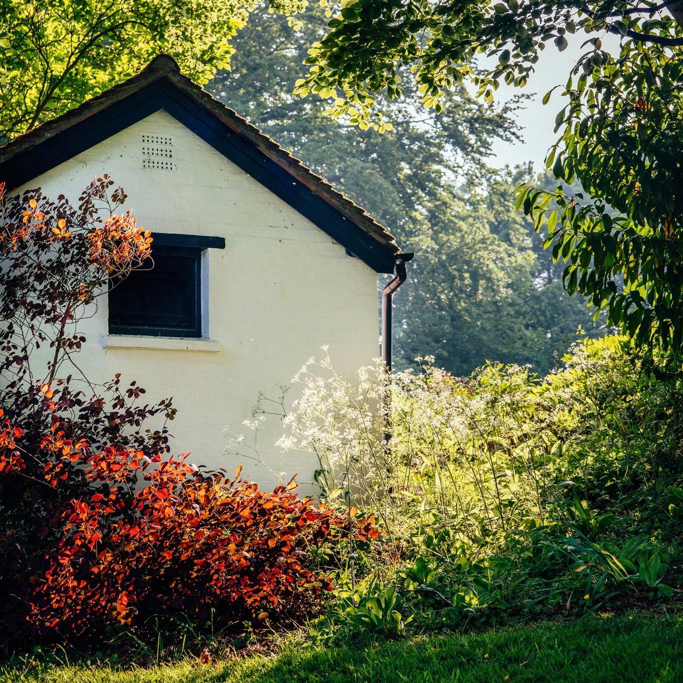 treehouse (3 of 35) 2.jpg