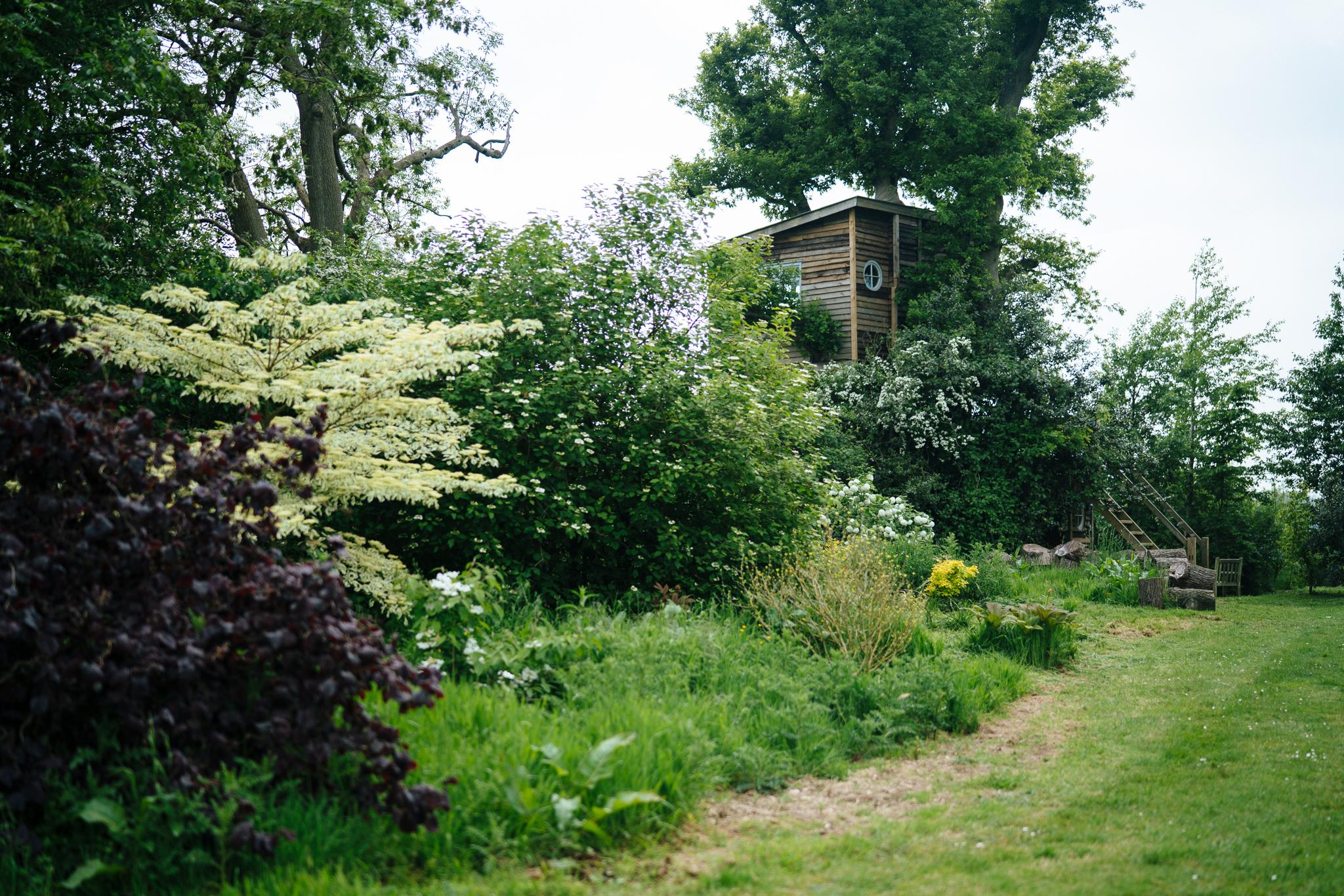 treehouse (62 of 21).jpg