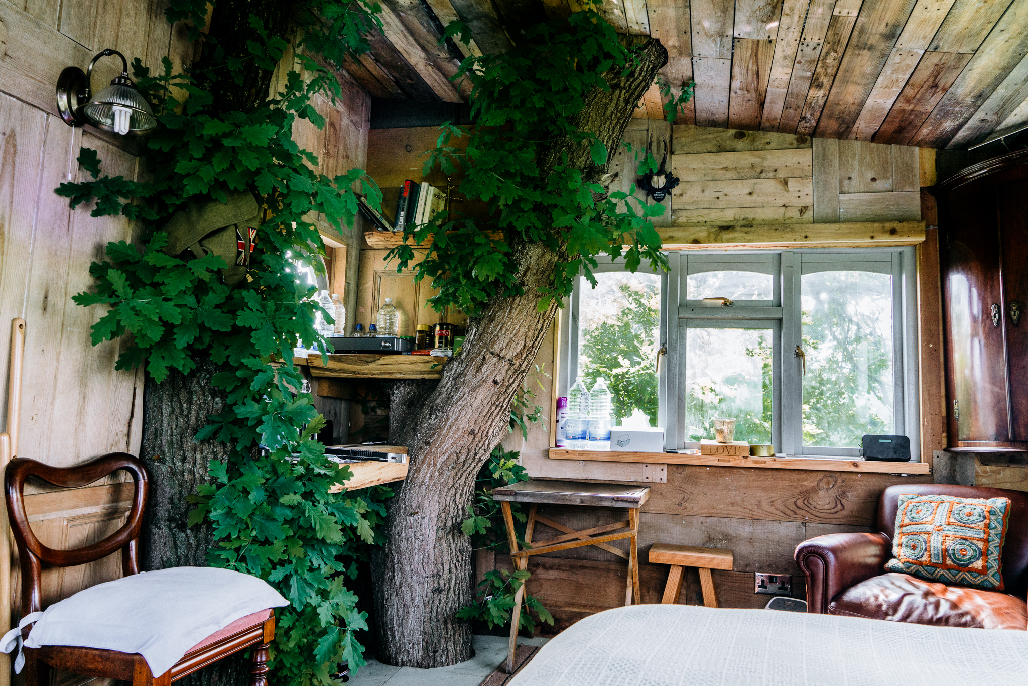 The Treehouse -