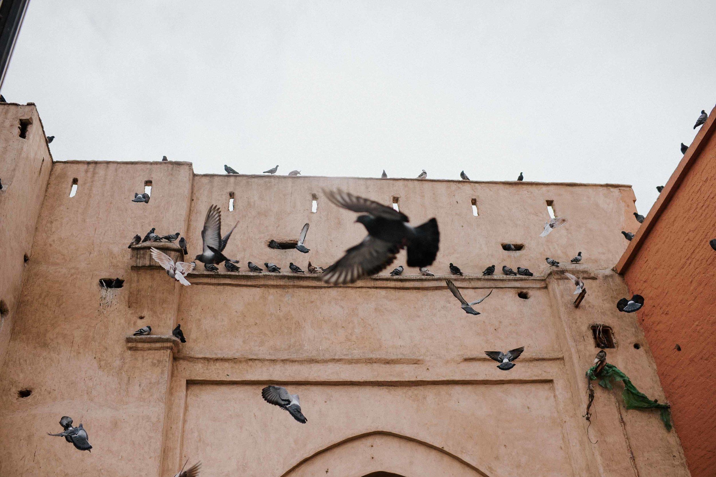 Morocco: perfect location for a destination wedding
