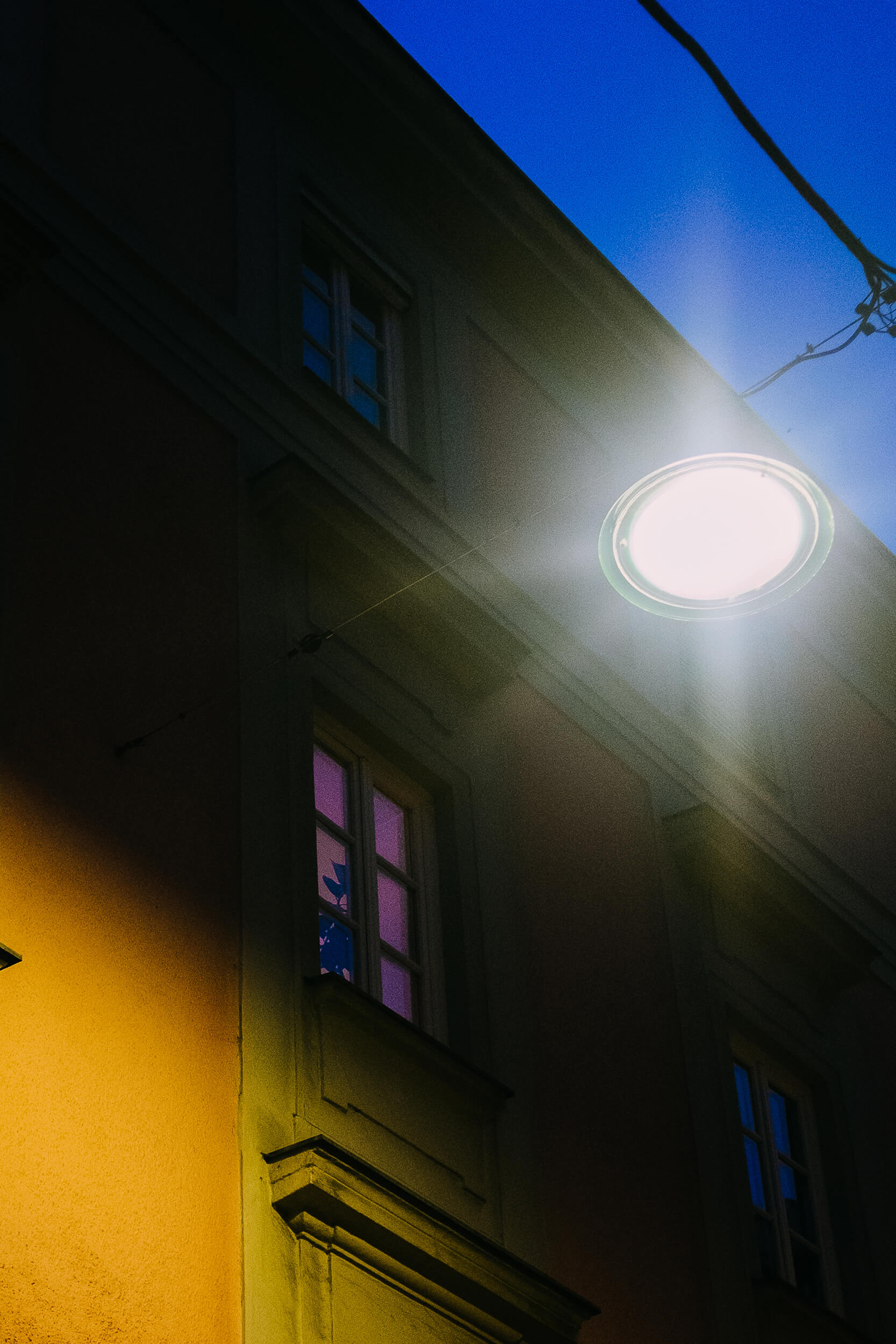 strangers-windows-night-vienna.jpg