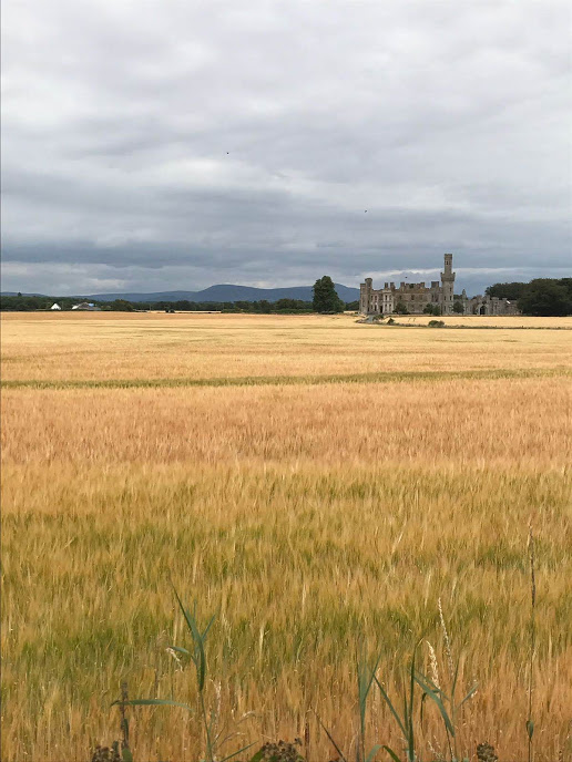 The view of Duckett's Grove on the drive in