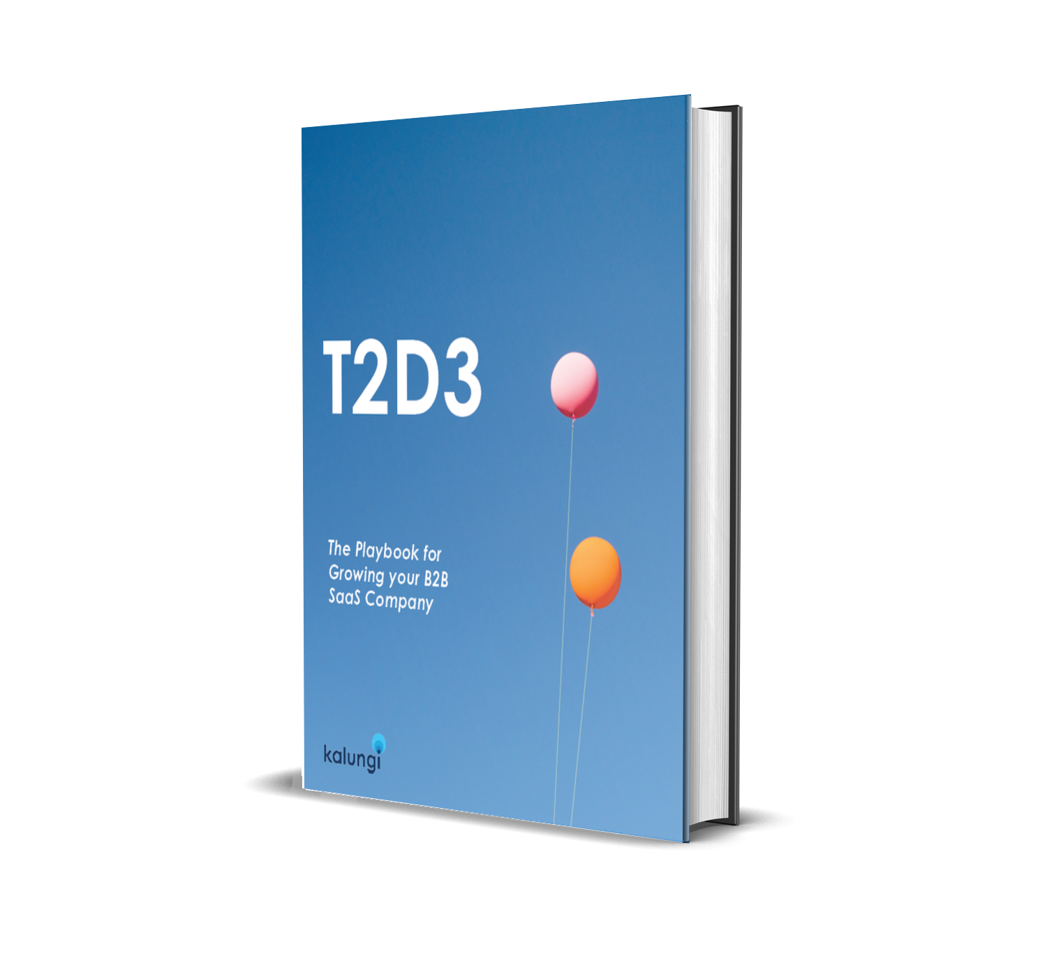 T2D3, the first book focused only on B2B SaaS Marketing.
