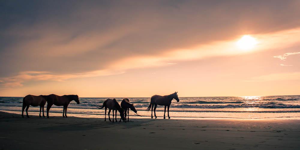 Sabandar-Beach-Sabah-Malaysia-0024.jpg