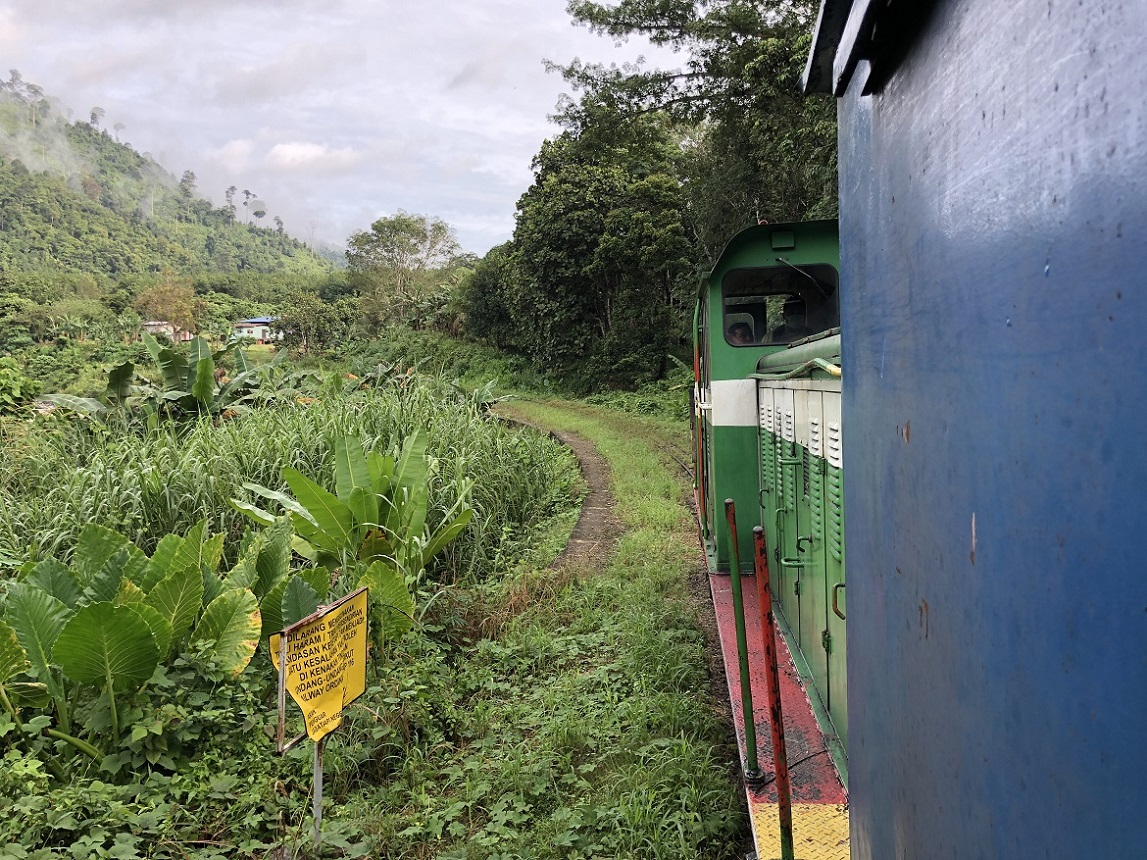 Enjoying the ride…view from the goods wagon and in the foreground growing behind the yellow sign are wild yam (local vegetable)