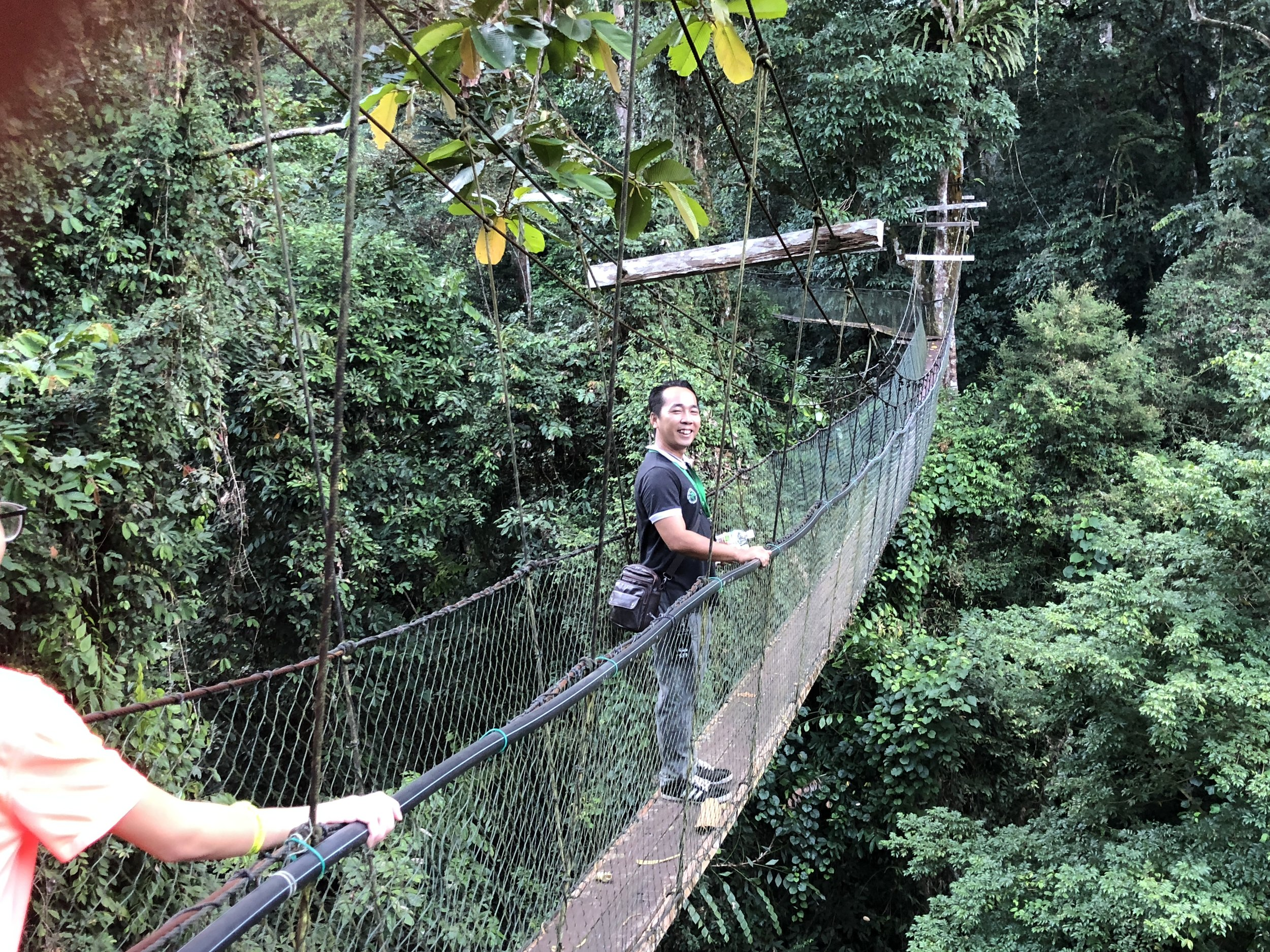 Canopy Walk (Christian - our National Park Tour Guide leads the way)