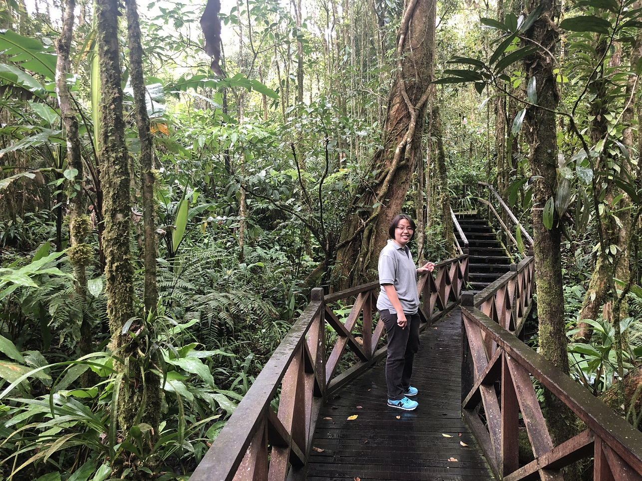 Kinabalu National Park: Enjoying a stroll through the Botanical Garden