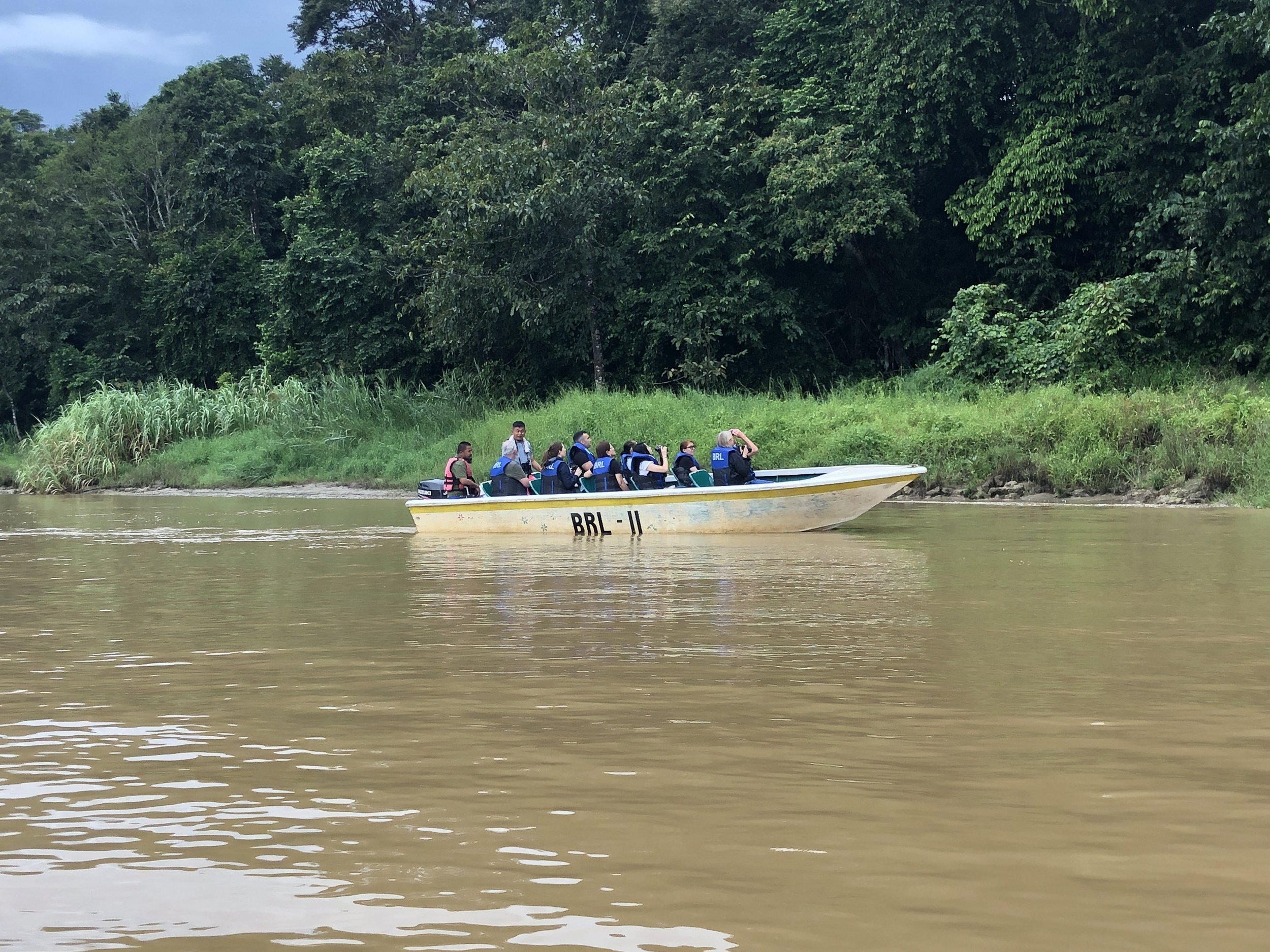 Enjoying searching for wildlife on a River Kinabatangan cruise