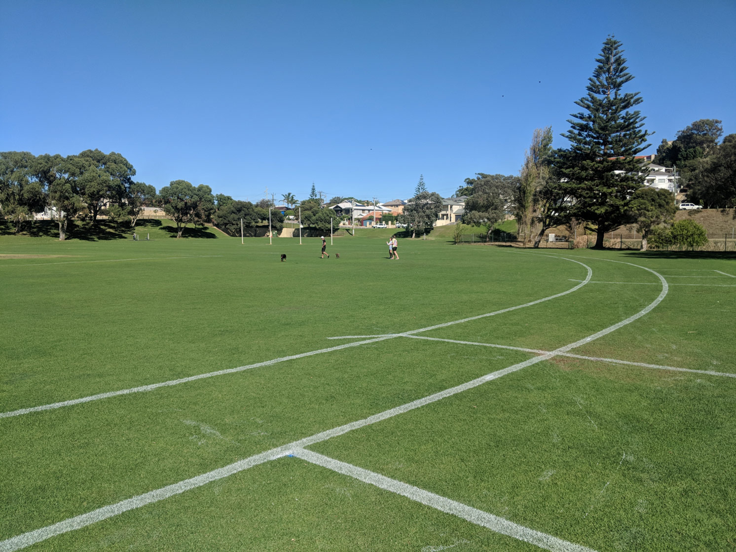 AFL spectator line and interchange zone in white line marking paint