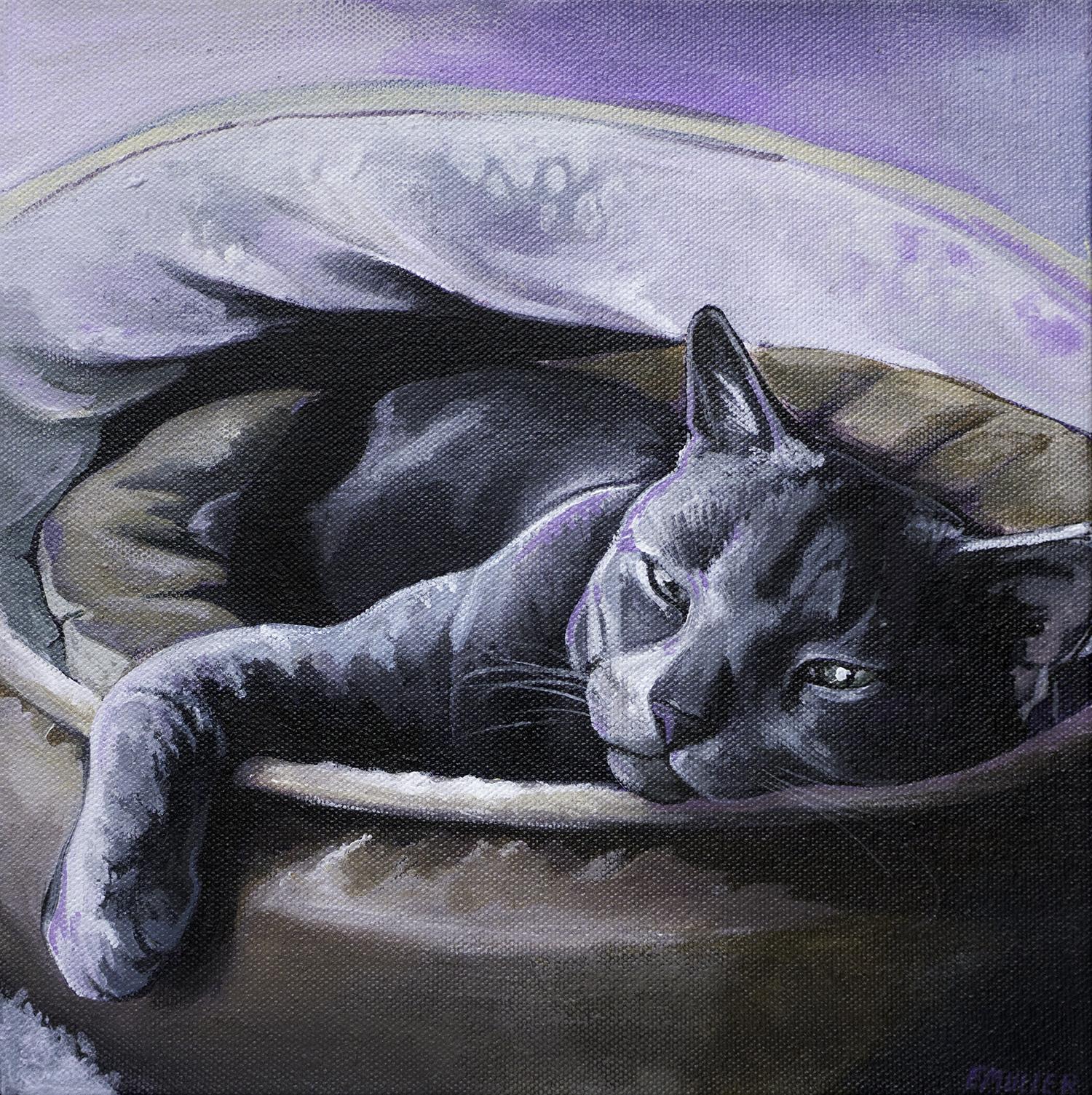 CatBed1.jpg
