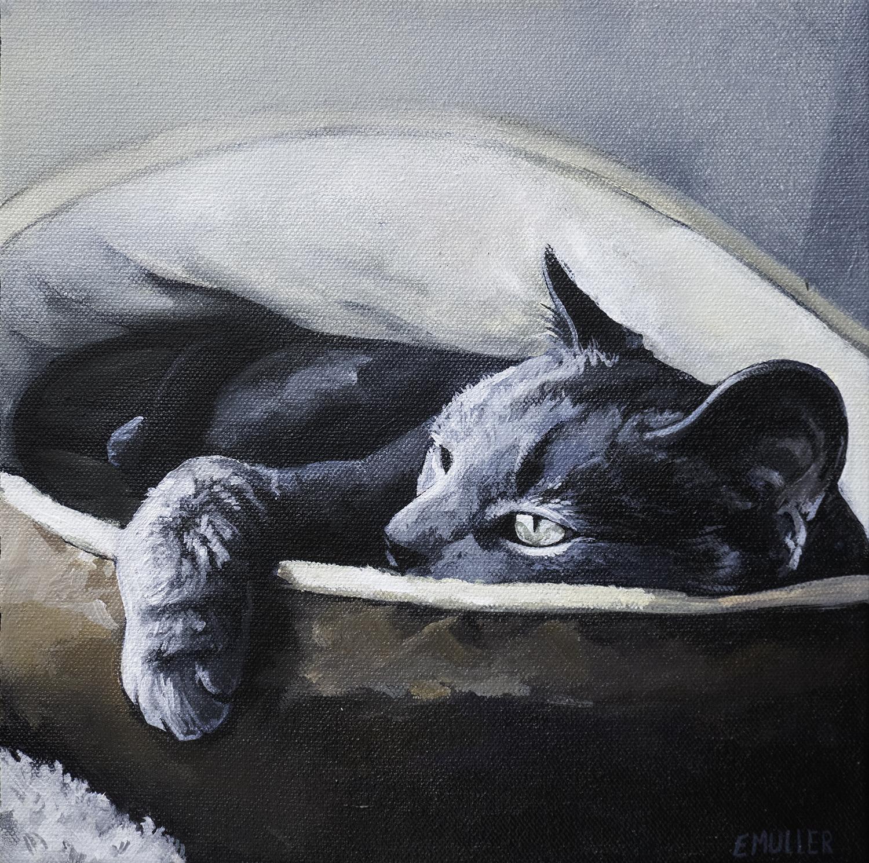 CatBed2.jpg