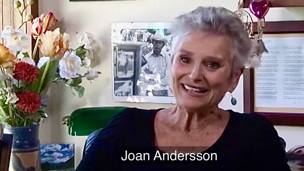 Joan Andersson (1).png