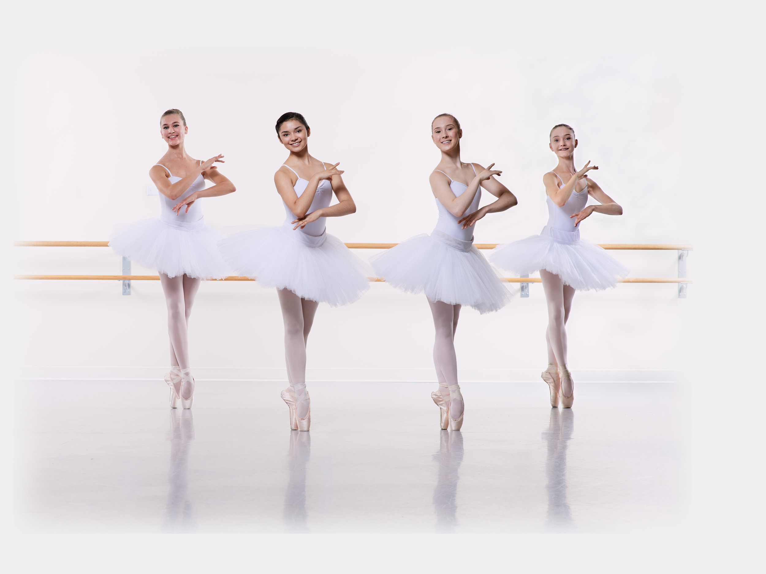 Ballet Royale Minnesota