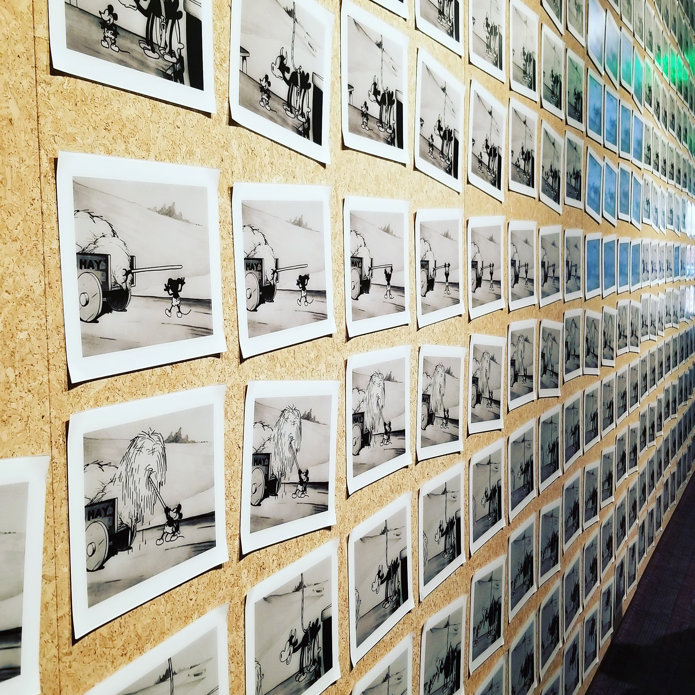 348 drawings from the cartoon Steamboat Willie, representing less than 15 seconds of film.