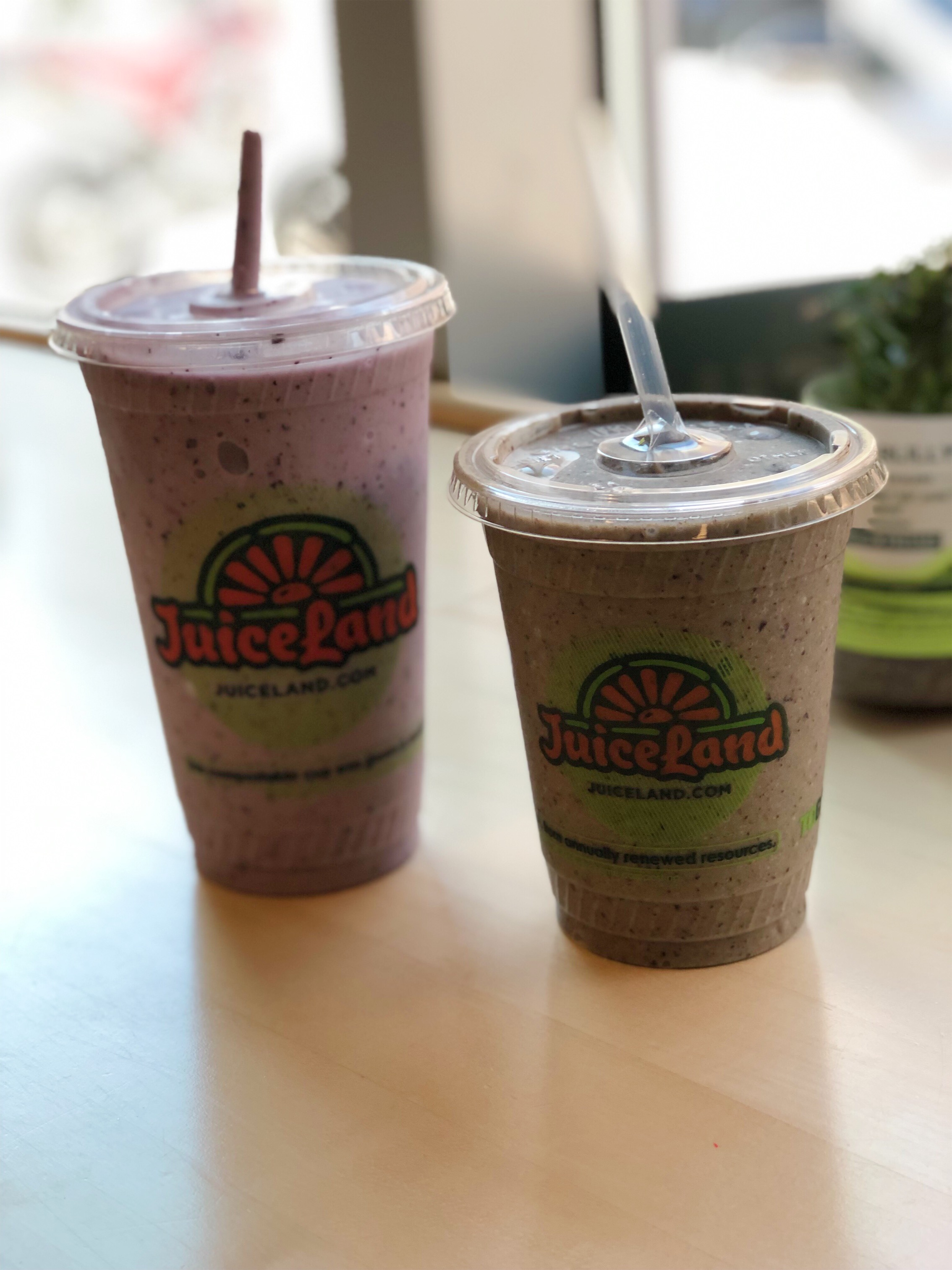 Wundershowzen smoothie at JuiceLand