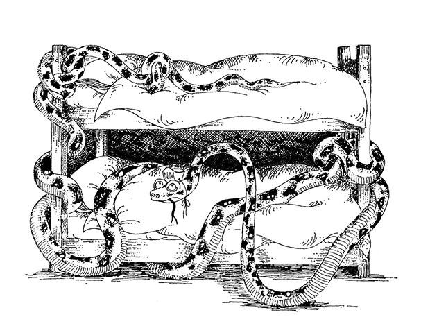 Grizzly snake copy.jpg