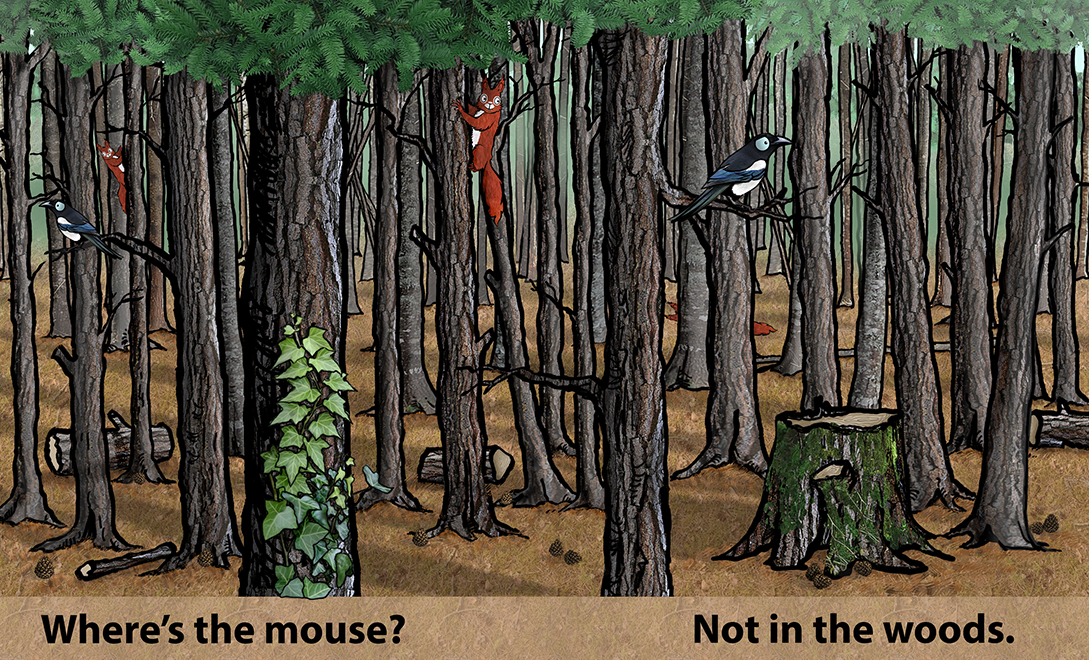 Where's the mouse page 1 and 2 copy.jpg