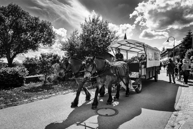 Tag des Ardenner Pferdes 2018