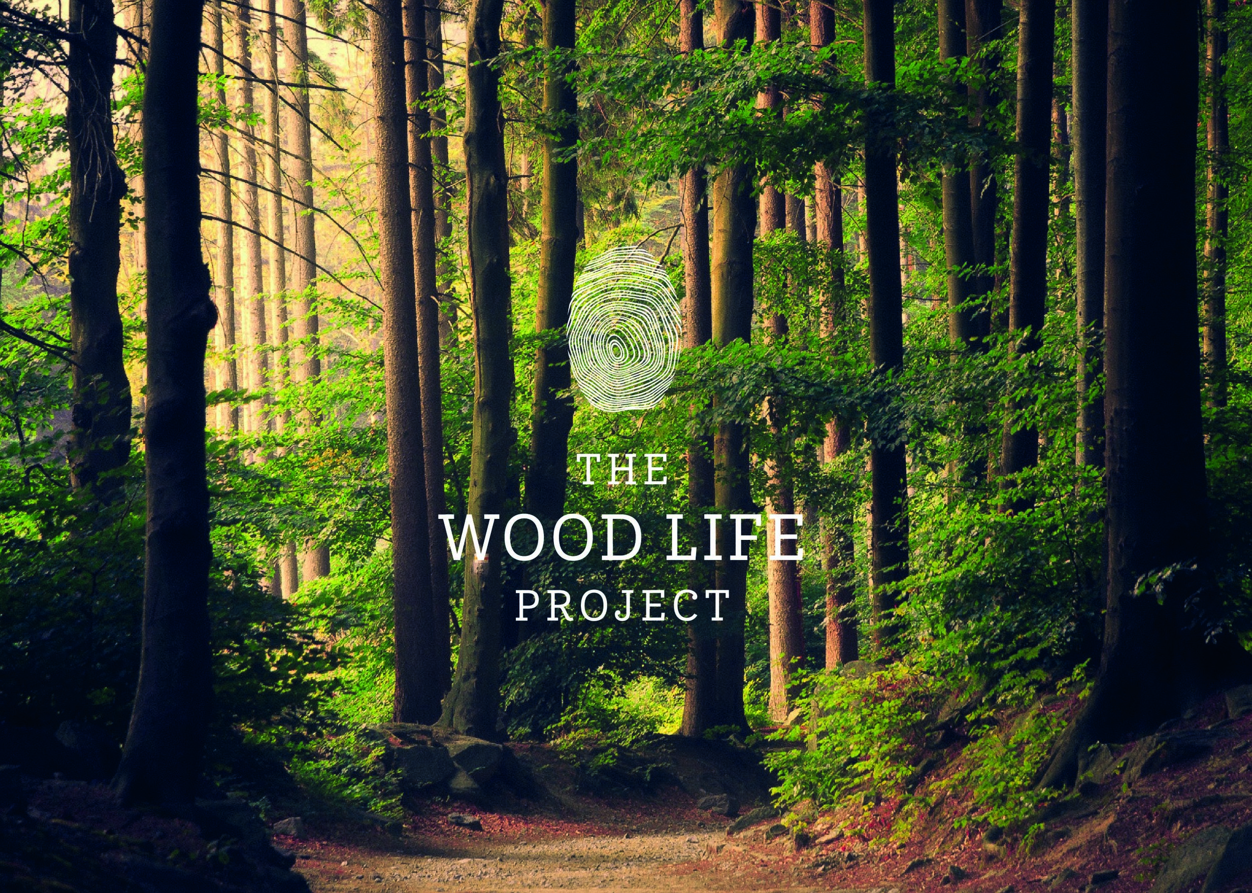 The wood life project instagram-12.jpg