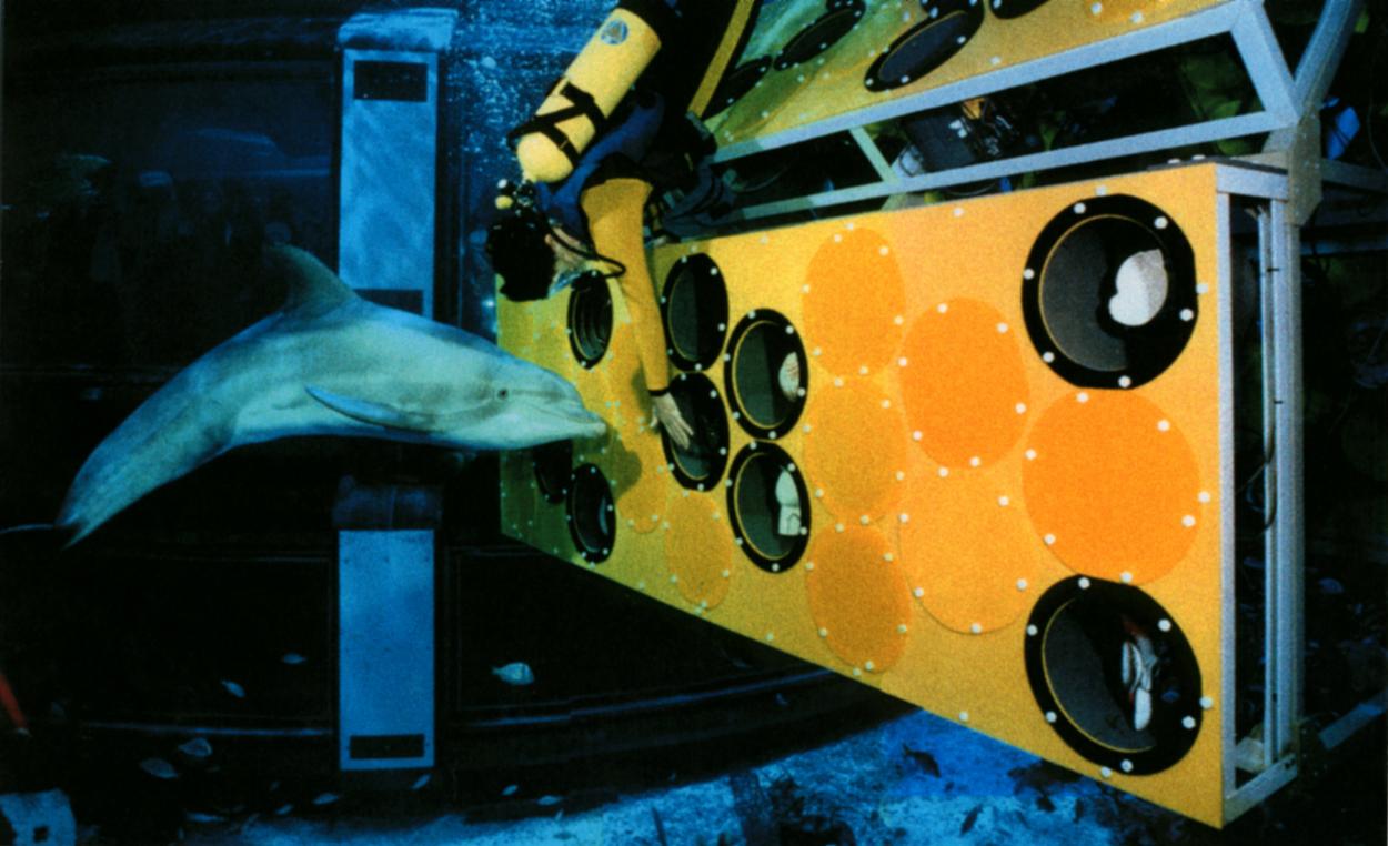 Monroe Innovation - Dolphin Keyboard (U.S. Patent)