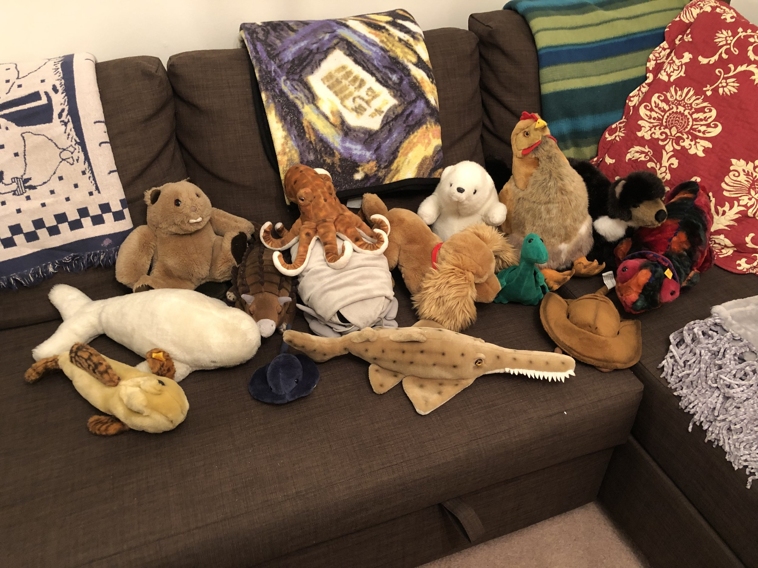 From left to right, that's Zappy the mudskipper, Baby the whale, Jack the beaver, Arnold the ankylosaur, Rey the ray, Polpe the octopus, Isa the sea roach, Choppy the saw shark, Jenny the dog, Ben the polar bear, Dragon the rhamphorhynchus, Favor the chicken, Magnet the horseshoe crab, Martin the pine marten, and Jackson the chameleon, all of whom you now care about.