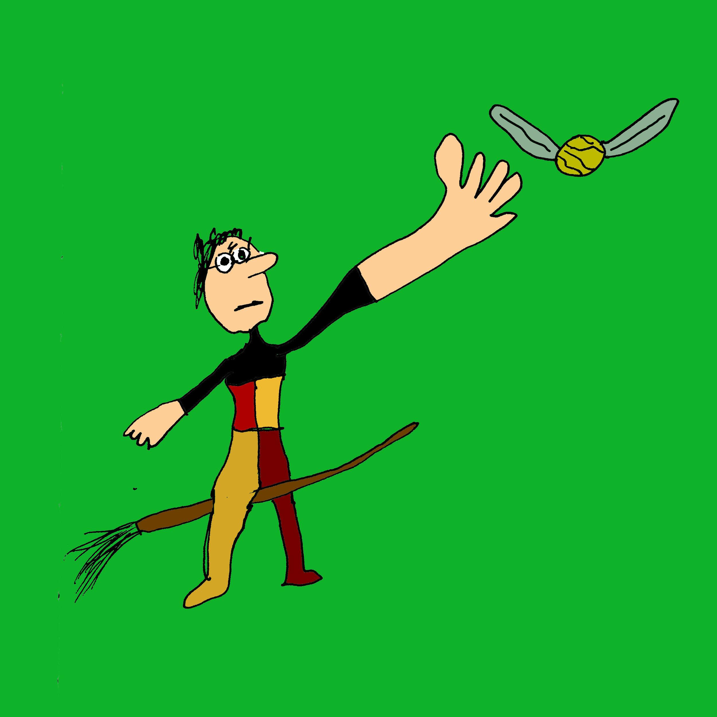 Harry-Playing-Quidditch.jpg