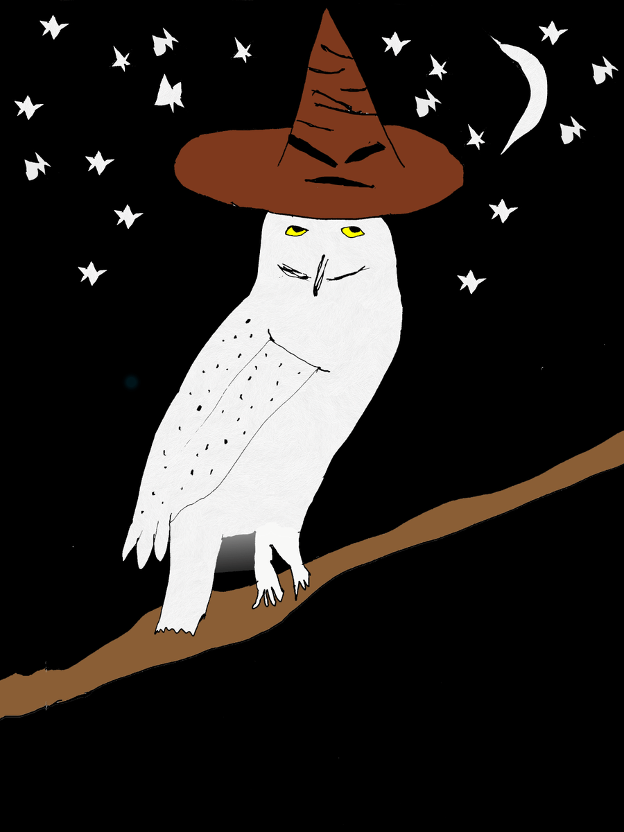 Hedwig and the Sorting Hat
