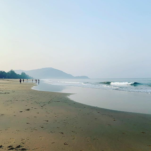 Morning view  #incubus #soulimmersionretreat2019 #selfdiscovery #joinus #barefootsoultravellerretreats #barefootsoultraveller #dogsofindia #agondabeach #mindbodymedicine #kinesiology #healthandwellbeing #flow #patience #connected #microcosm #macrocosim #oftheland #magic #love #beach