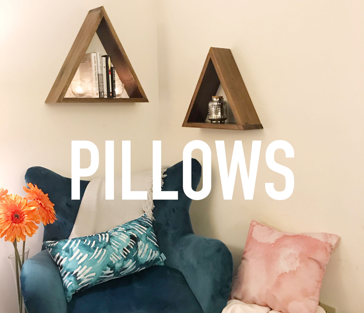 throw pillows - choose from soft velveteen or modern canvas fabrics