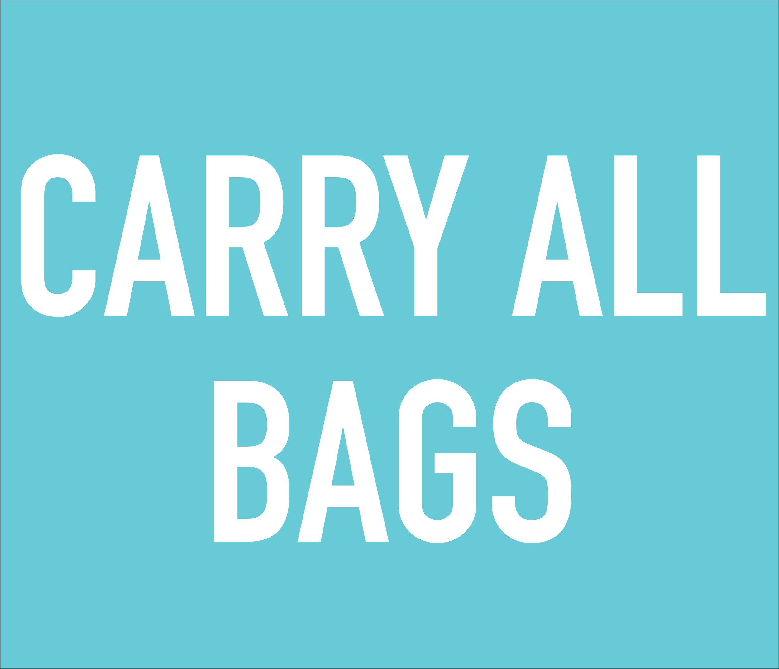 everyday bags for organization - choose from makeup bags to zipper carry-alls