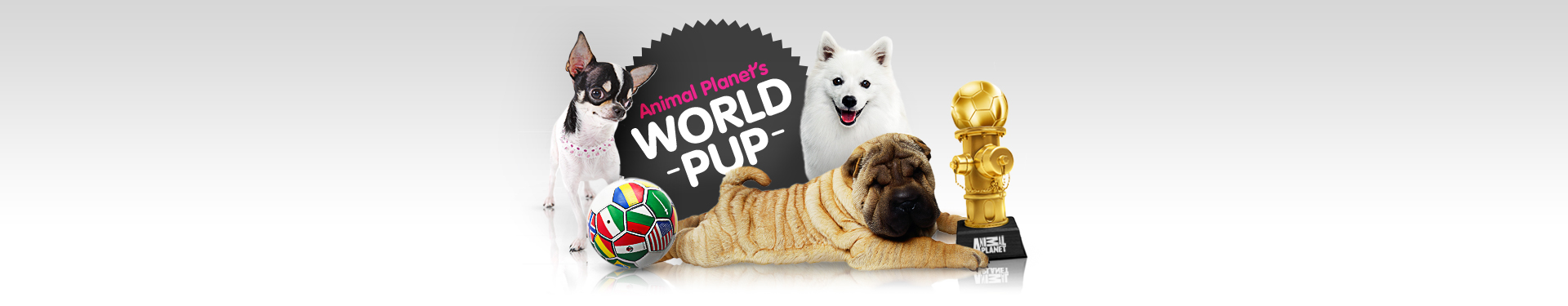 WORLD_PUP_1920x375_PORTAL.jpg