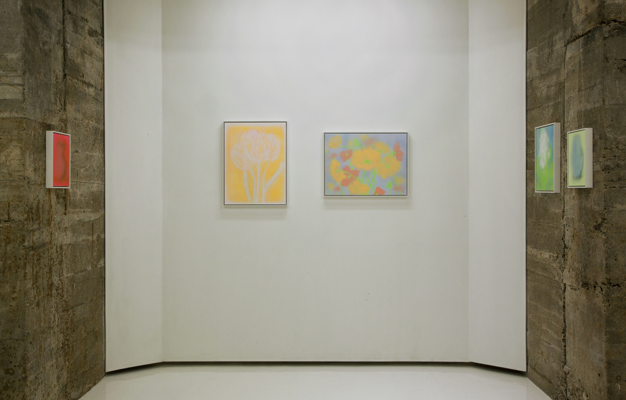 Kevin Ford, Tops Gallery, 15.jpg