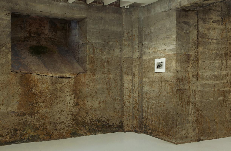 Jonathan VanDyke, Tops Gallery, 5.jpg