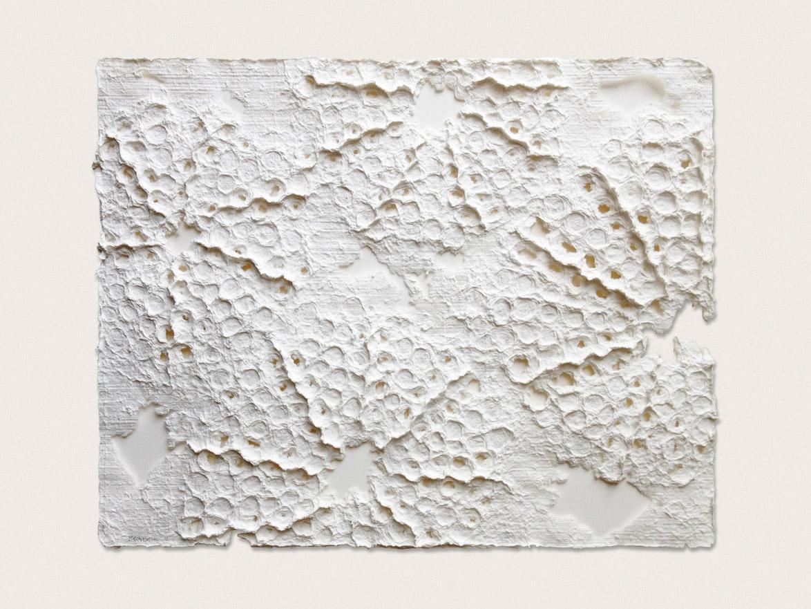 'Delicaseas'  Hand formed paper - 45cm x 57cm