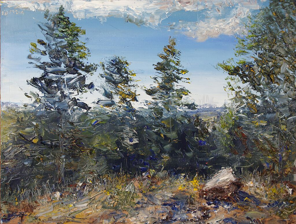 "summer landscape - oil on canvas board24"" x 18""A landscape inspired by the Mountain scenery near Colorado Springs."