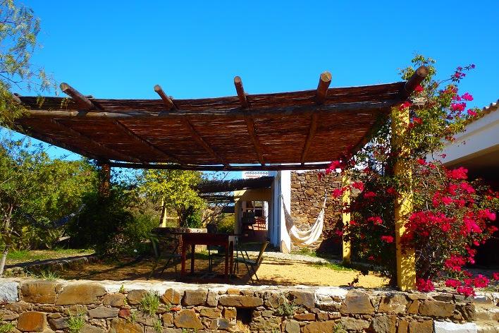 Back terrace.JPG
