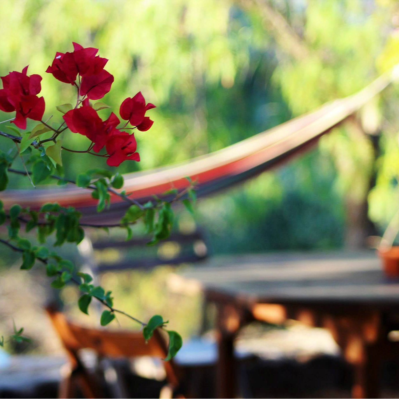 Flower hammock SQUARE MM.jpg
