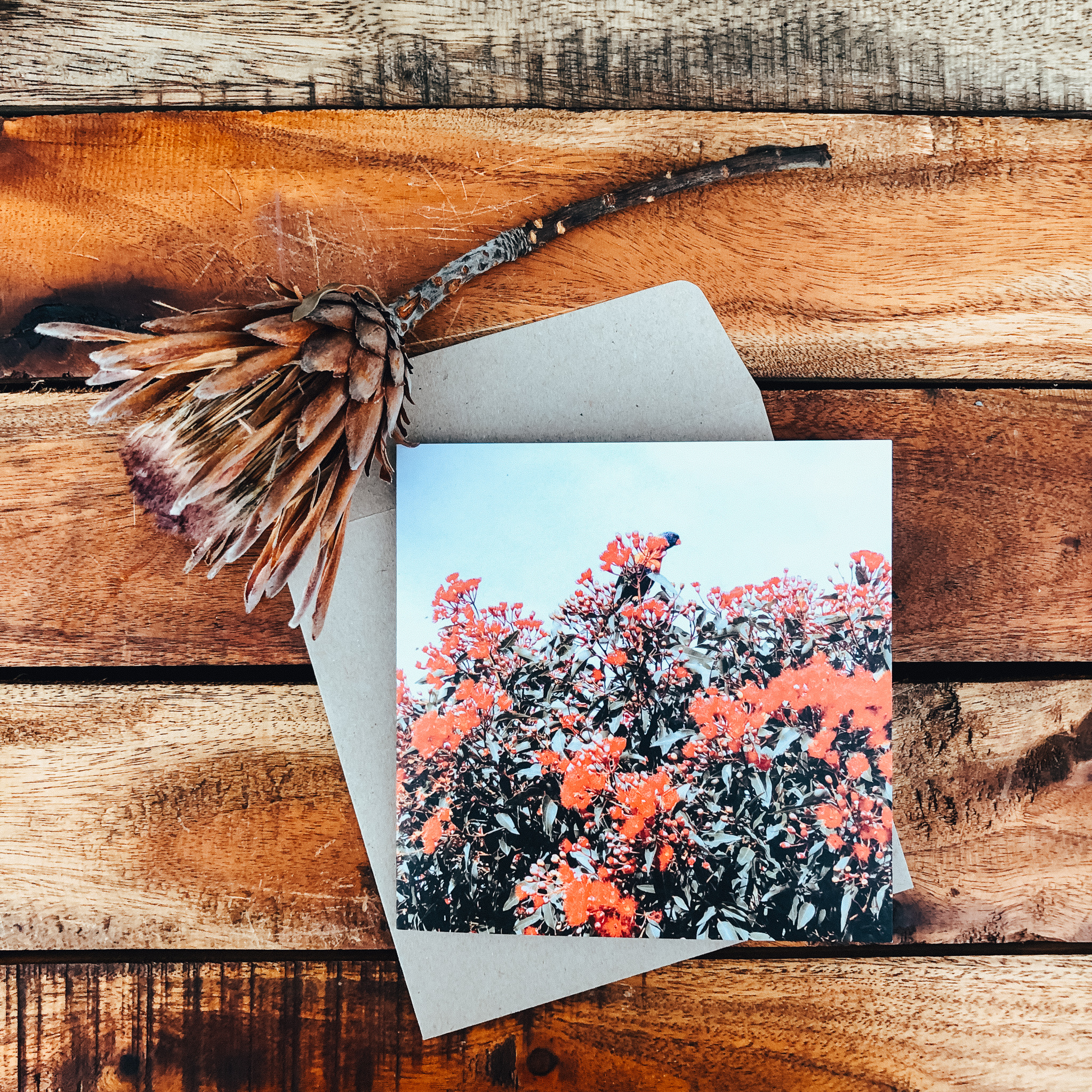 Signature Floral Cards - Printed on 300gsm 100% post-consumer recycled paper
