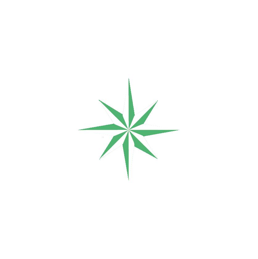 Branding-equanima-estrella-03.png