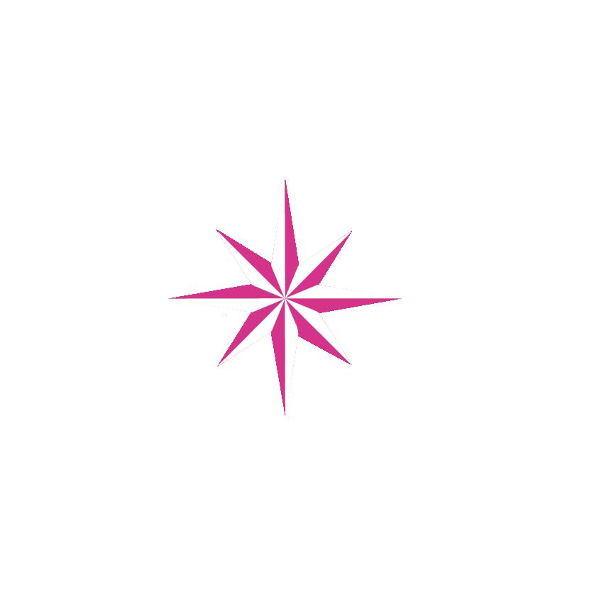 Branding-equanima-estrella-02.png