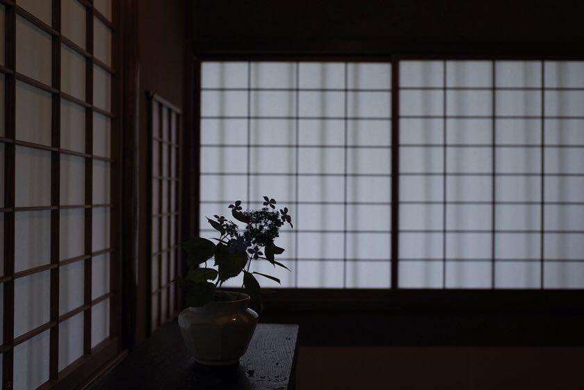sakamaruyama10.jpg