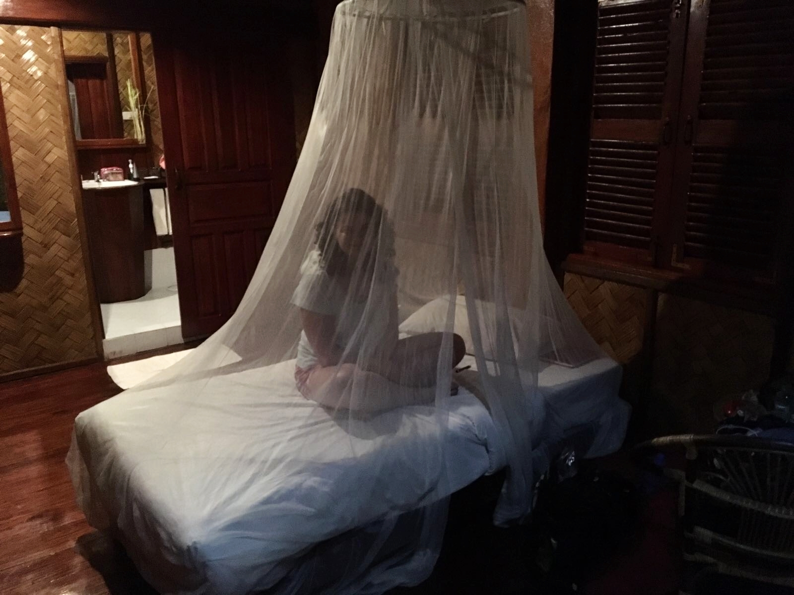 Experiencing The Mosquito Net