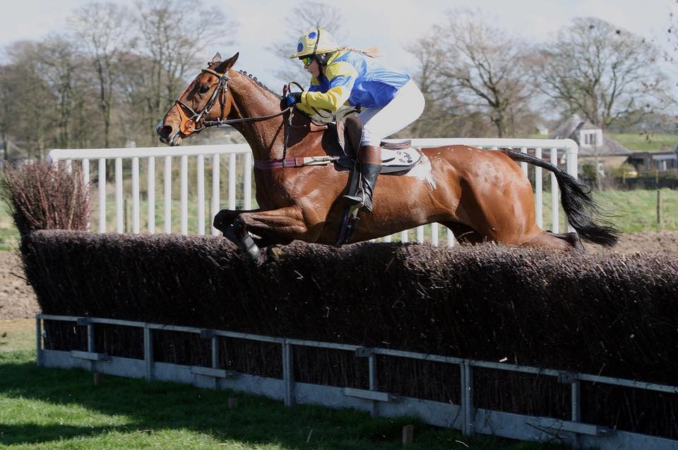 Duttons Horse Feeds Transport Lucinda.jpg