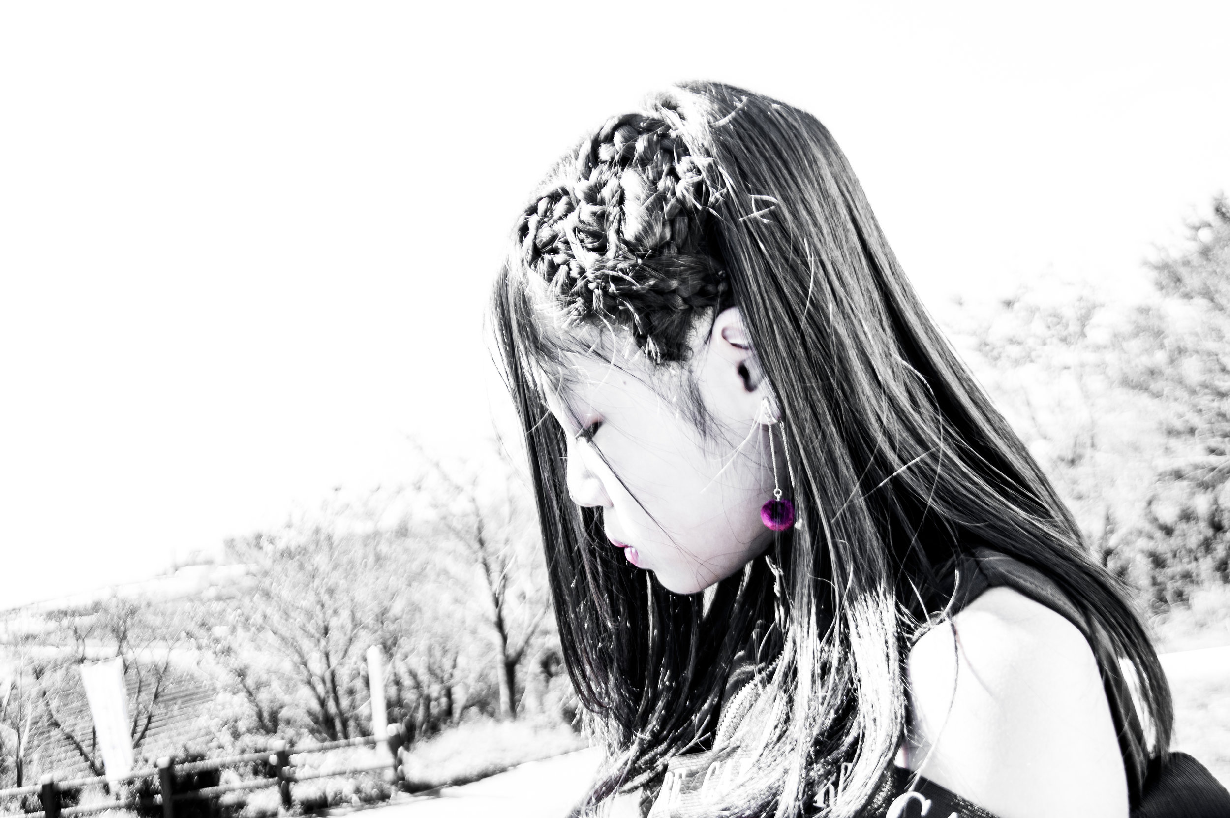 DSC_1843d.jpg