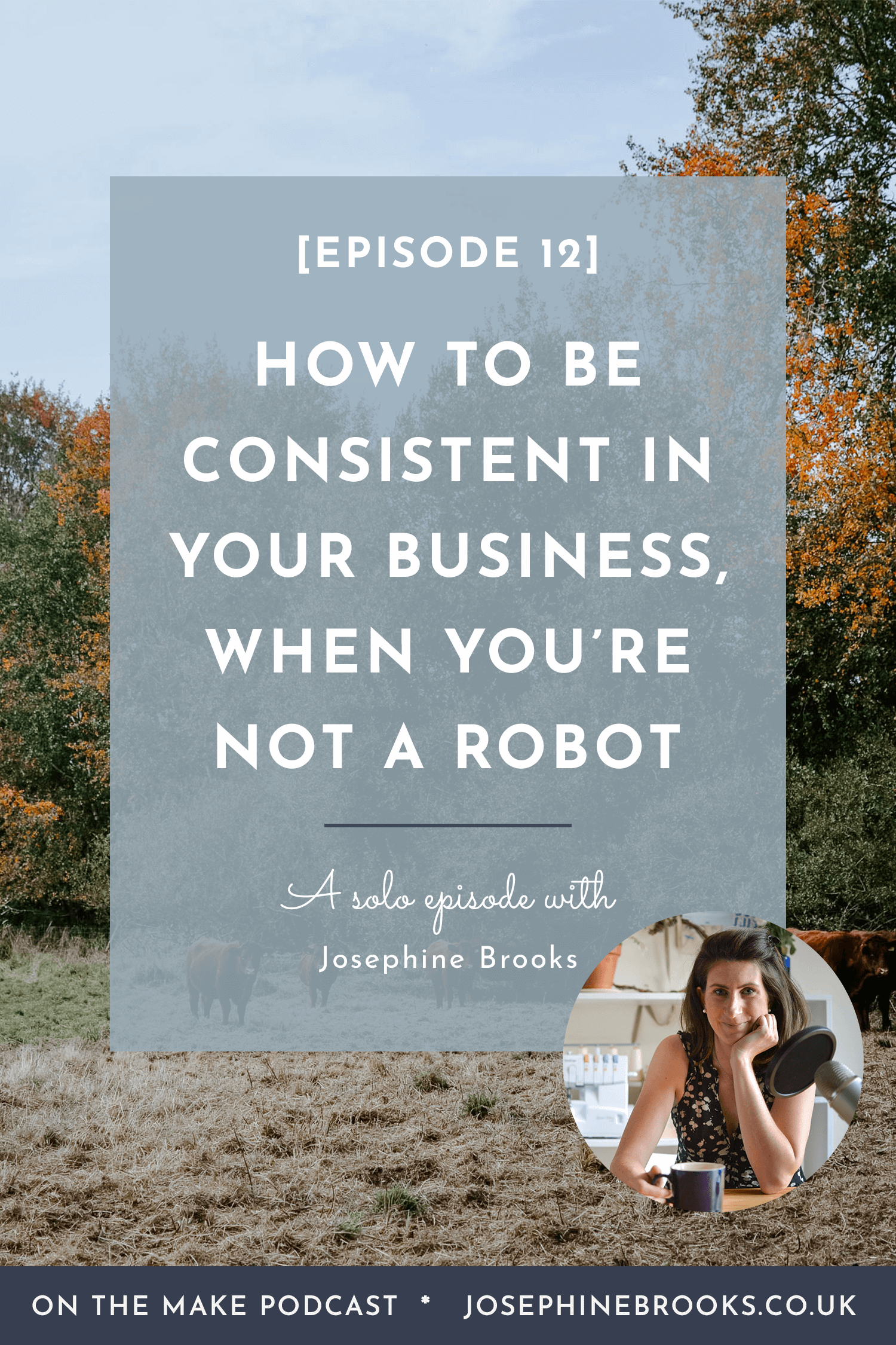 How to be consistent when you're not a robot - Episode 12 of On The Make podcast, How to run a business consistently, How to be consistent, Consistent content production, Consistent side-hustle