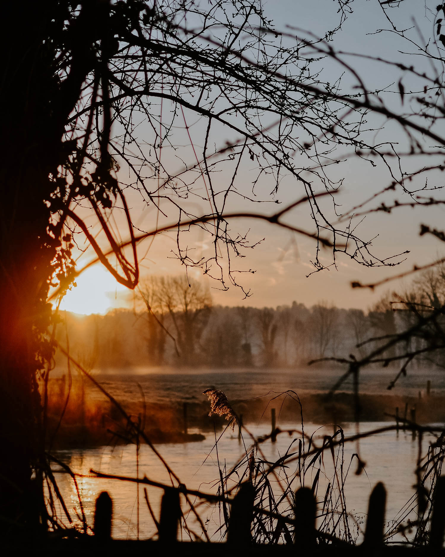 An early winter morning and sunrise by the river | Josephine Brooks
