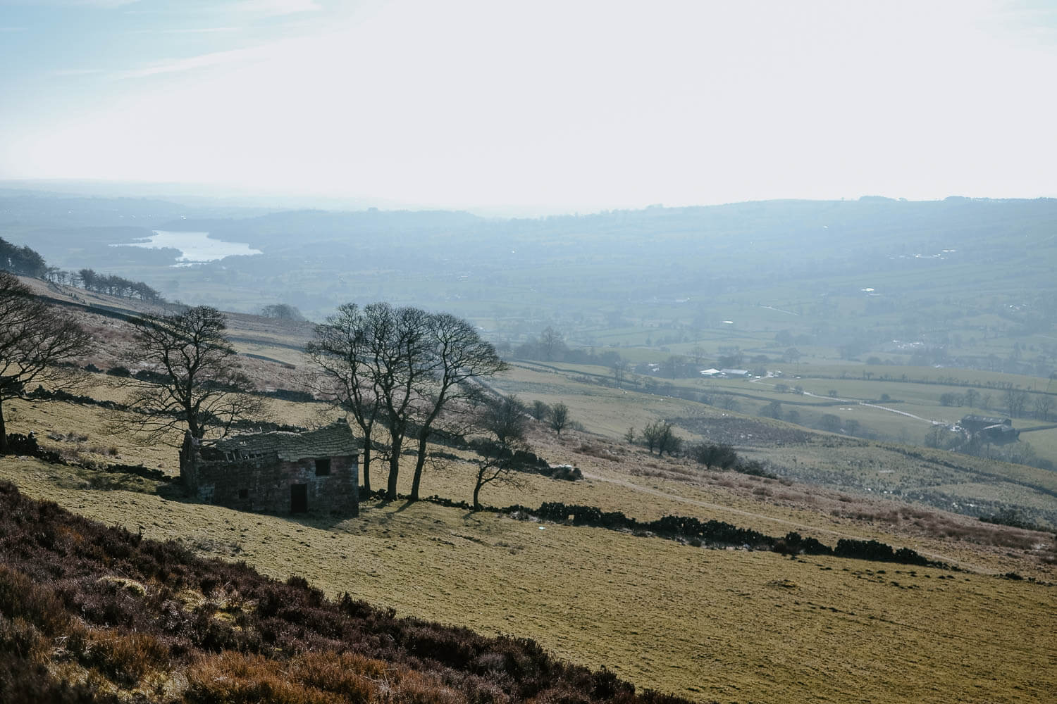The view from the Roaches in the Peak District - a rugged landscape with dry stone walls