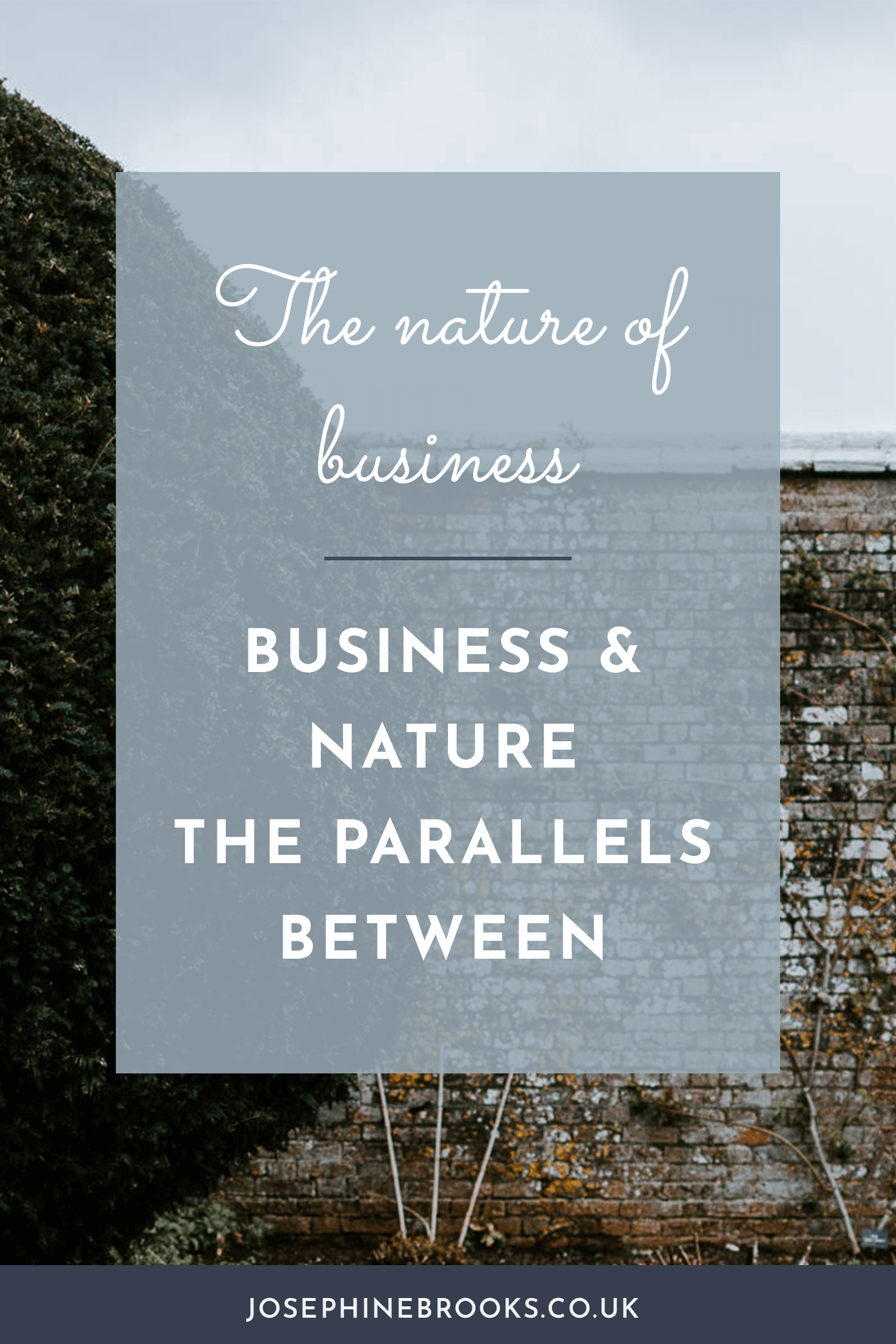 Business & Nature, the Parallels Between, Similarities between business and nature, Slow living and growing a creative business, being in sync with nature, getting outdoors when you're growing a creative business | Josephine Brooks